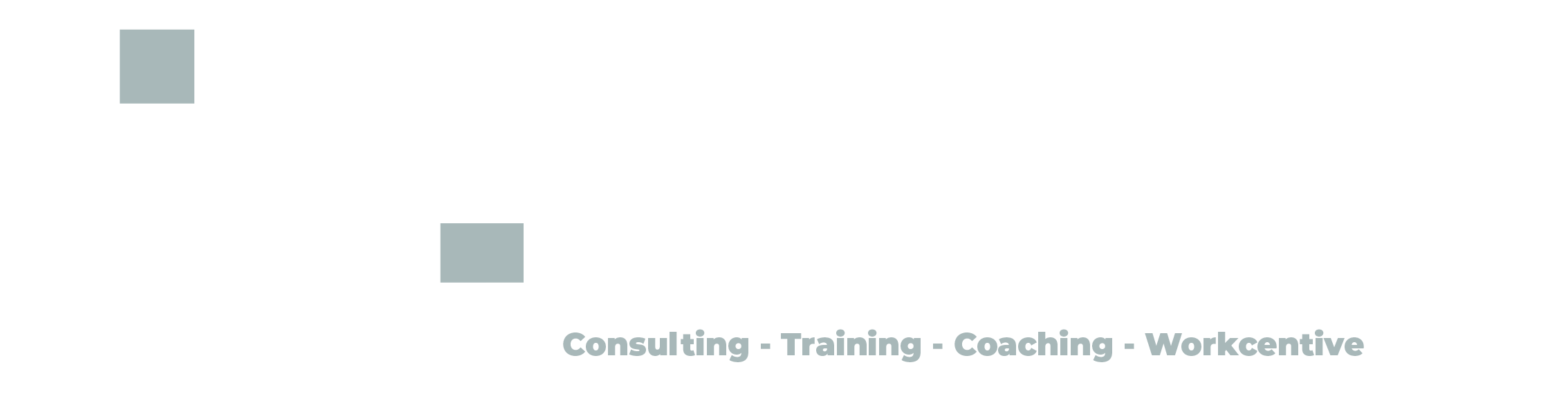 Online-Trainings by Witzany